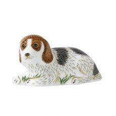 Royal Crown Derby Belle Puppy