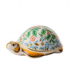 Winter Tortoise